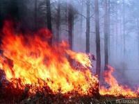Оценка ущерба нанесенного имуществу после затопления, пожара